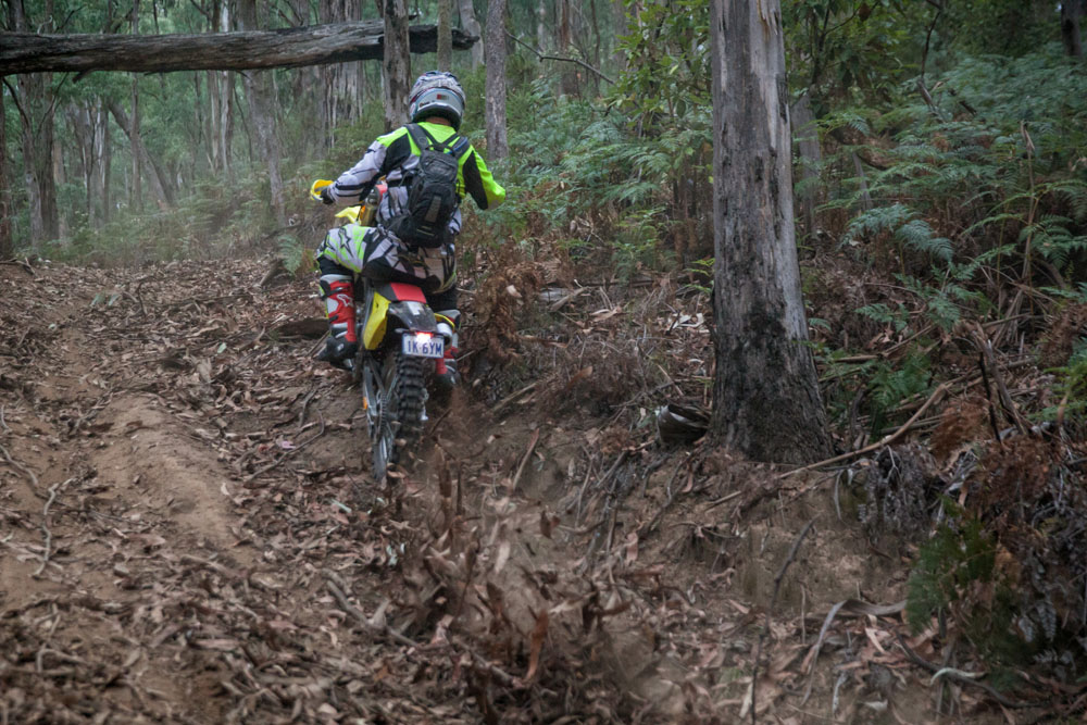 Suzuki Staff - Riding-117